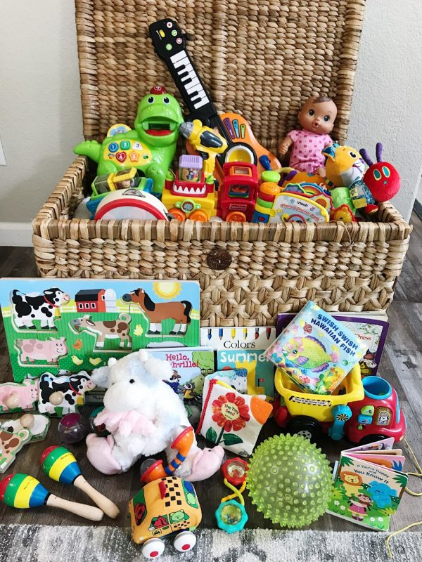 Baby and Toddler Toy Rental